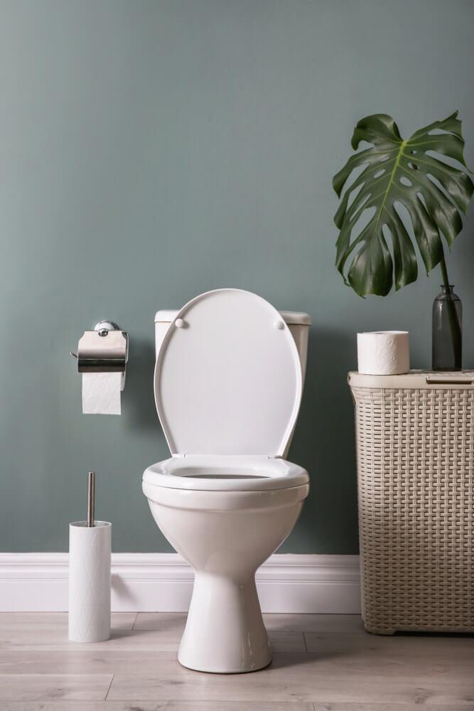 Fix Leaky Toilets
