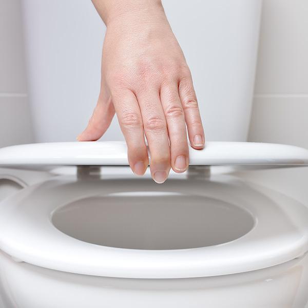 Toilet seat styles