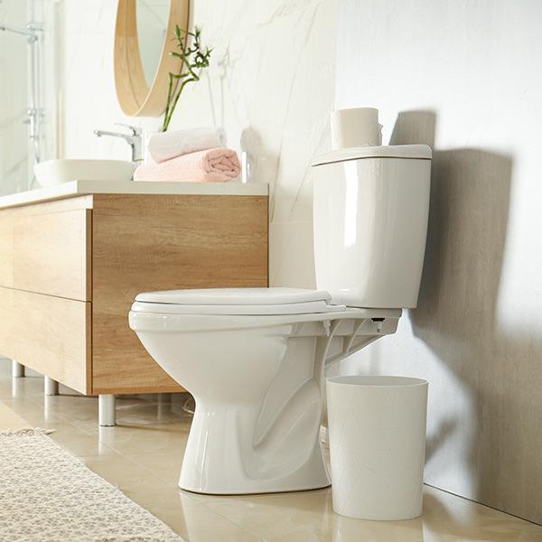 Plastic toilet seats
