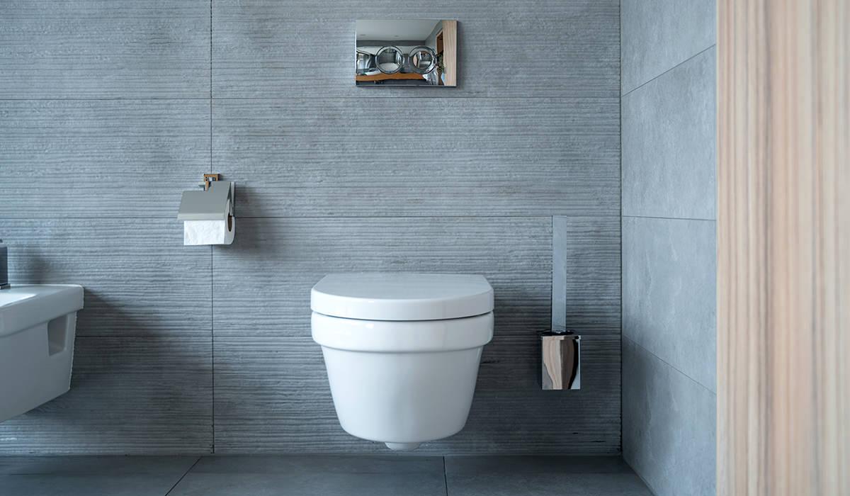 Hands-Free Toilet