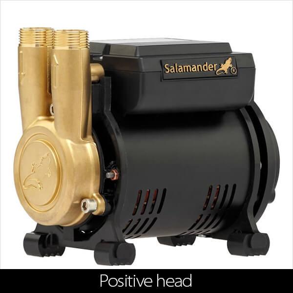 Positive head