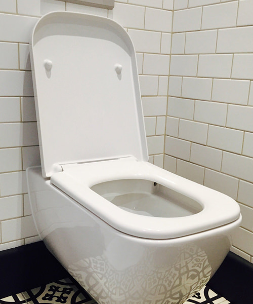 Toilet Seats Buying Guide