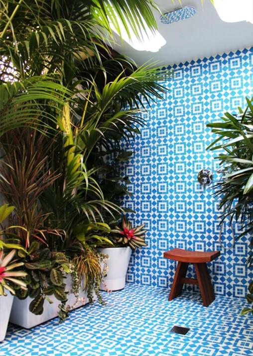 Wet Room Plants