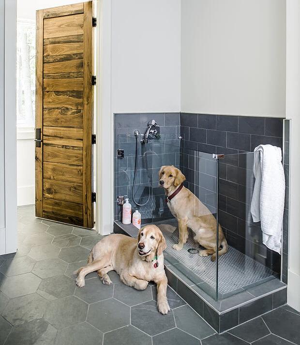 Dog's Bathroom